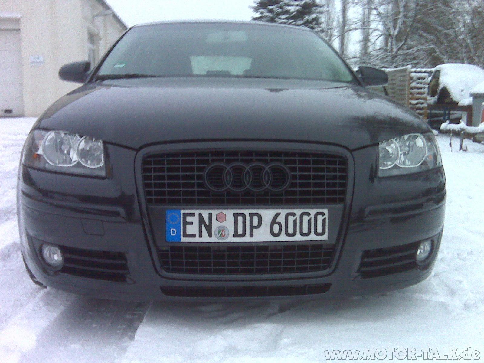 Img00926 Bilder Schwarz Lackierter Grill Audi A3 8p