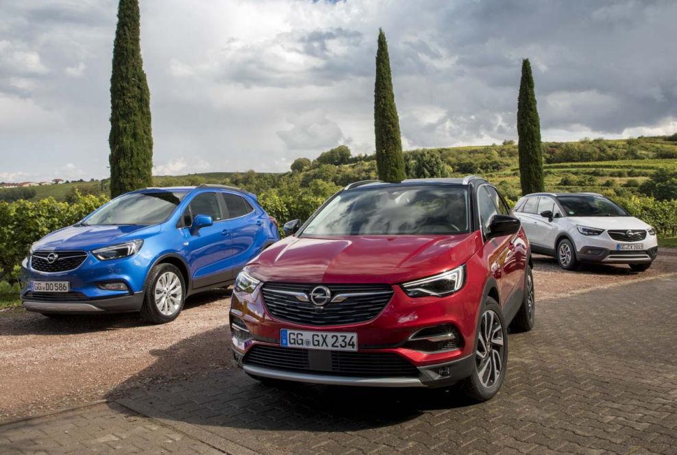 Alle Opel Suv Tragen Ein X Im Namen Der Grandland X