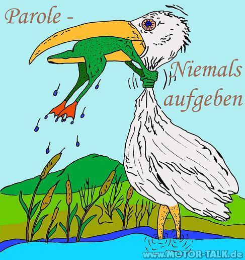 parole-niemals-aufgeben-small